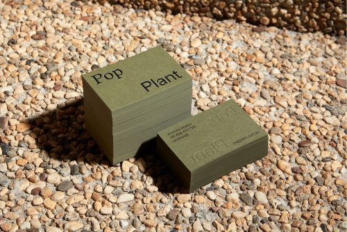 Rebrand for plantscapers Pop Plant utilises their scientific know-how and aesthetic prowess