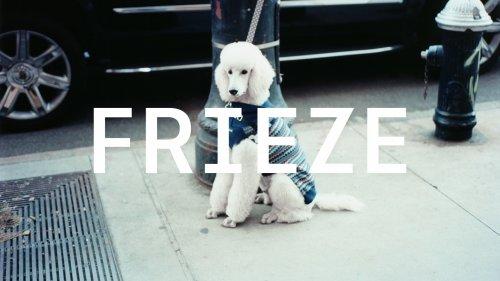 Frieze's new brand identity