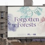 Forgotten Forests campaign
